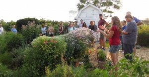 Suburban Permaculture Garden Walk - Hill @ Hill Residence | Wheaton | Illinois | United States
