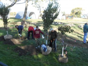 Community volunteers planting fruit trees at TRI demonstration edible forest garden