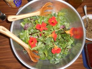 TRI-EWP-wild greens salad