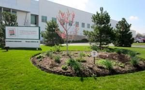 Northern Illinois Food Bank Growing Food Security Garden