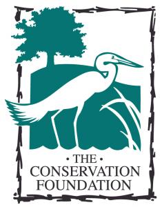 TCF Color Logo