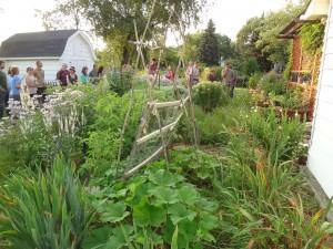 Hill Suburban Permaculture garden walk & learn 72114