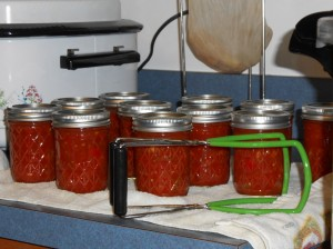 Water bath canned salsa