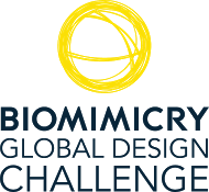 2015 Biomimicry Global Design Challenge logo