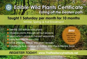 edible-wild-plant-certificate-course-TRI-2016