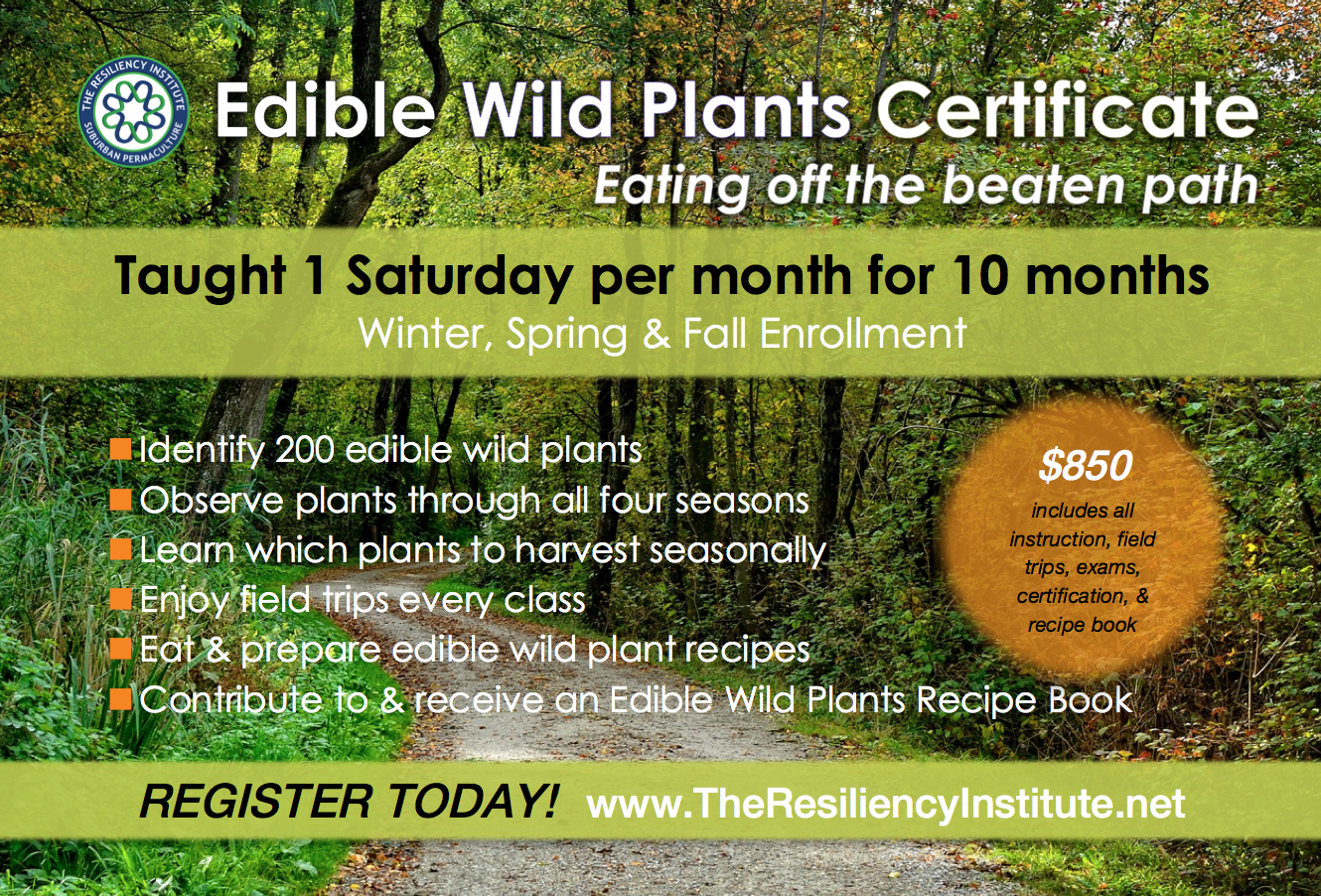 registration the resiliency institute edible wild plants certificate course spring registration