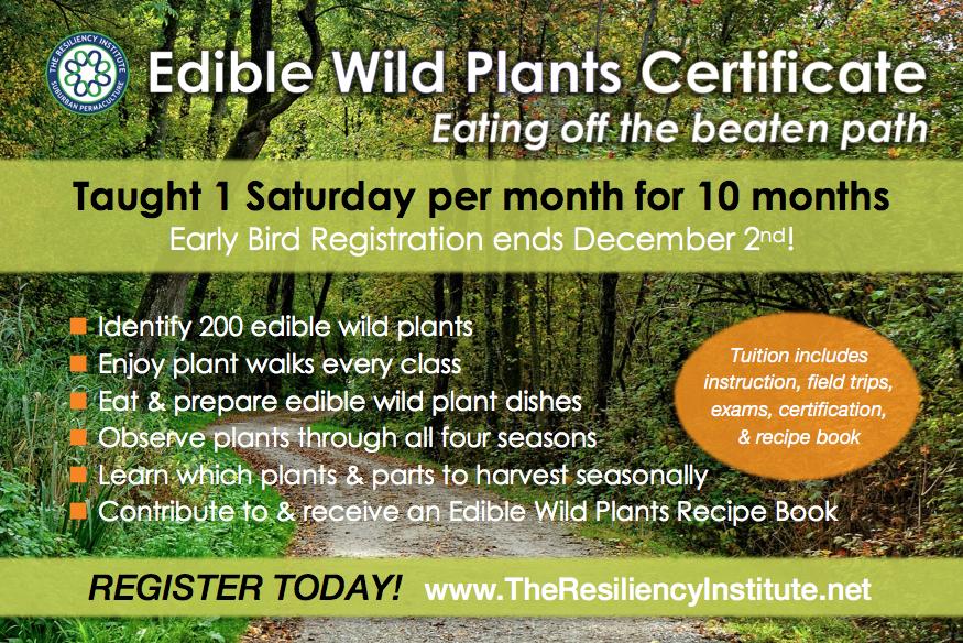 edible-wild-plants-postcard-tri-2017