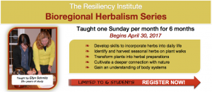 Bioregional Herbalism Series @ The Resiliency Institute | Naperville | Illinois | United States
