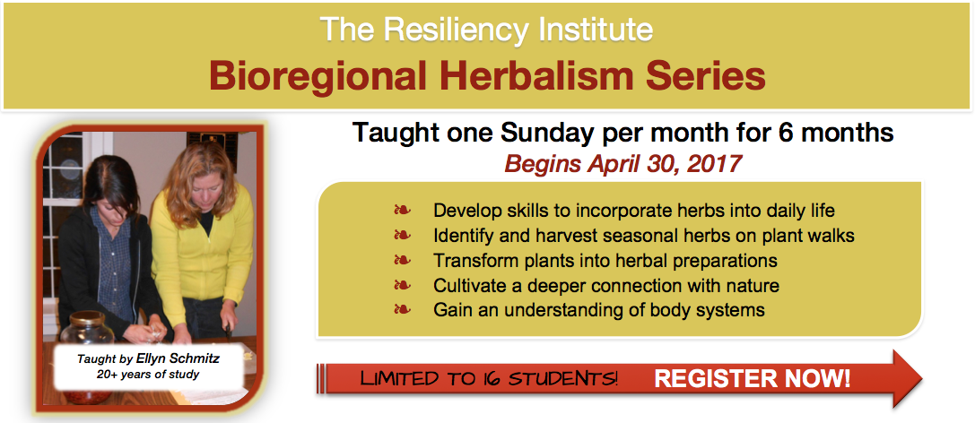 Bioregional Herbalism Series The Resiliency Institute - Map of us bioregions ancient food traditions