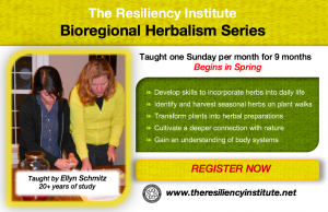 Bioregional Herbalism Series 2018 @ The Resiliency Institute | Naperville | Illinois | United States