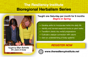 Bioregional Herbalism Course Series 2018 @ The Resiliency Institute | Naperville | Illinois | United States