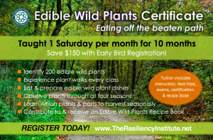 Edible Wild Plants Certificate Course 2018 @ The Resiliency Institute | Naperville | Illinois | United States