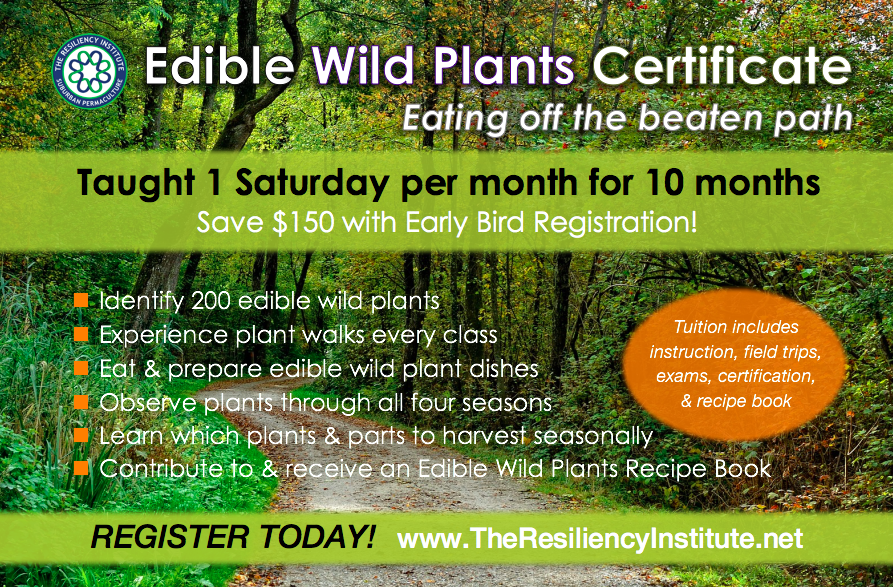 edible wild plants foraging certification