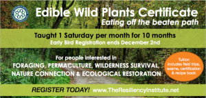 Edible Wild Plants Certificate Course @ The Resiliency Institute | Naperville | Illinois | United States