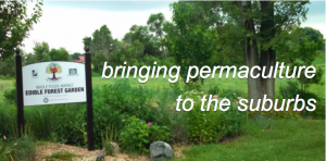suburban permaculture