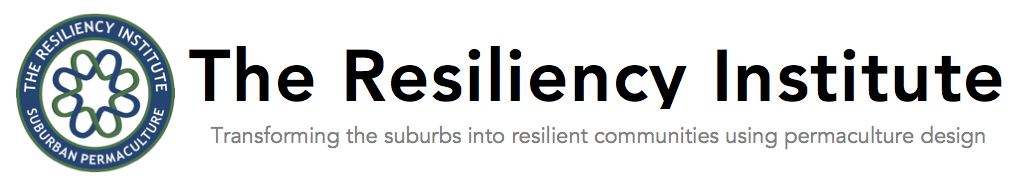 The Resiliency Institute