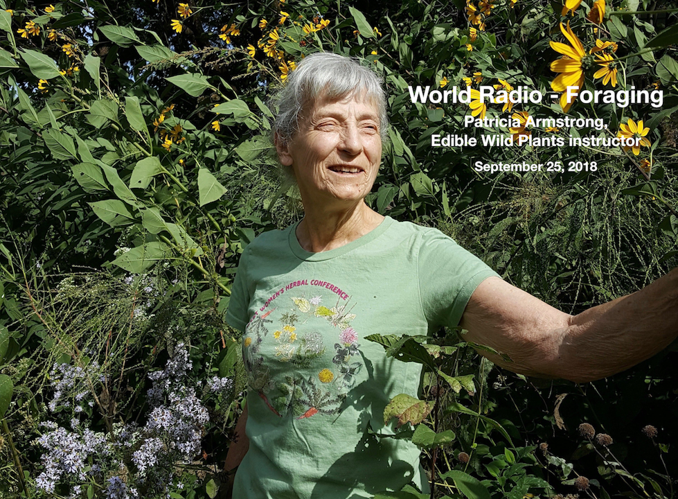 edible-wild-plants-pat-armstrong-TRI