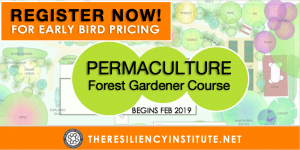 Permaculture Forest Gardener Course 2019 @ The Resiliency Institute | Naperville | Illinois | United States