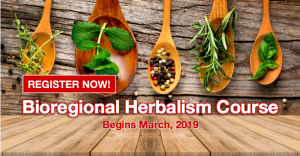 Bioregional Herbalism Course 2019 @ The Resiliency Institute | Naperville | Illinois | United States