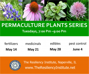 Permaculture Plants - Herbaceous Layer Plants: Medicinals @ The Resiliency Institute | Naperville | Illinois | United States